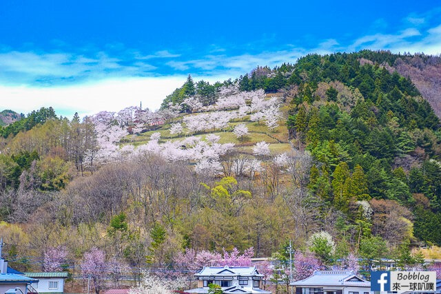 Arakurayama Sengen Park