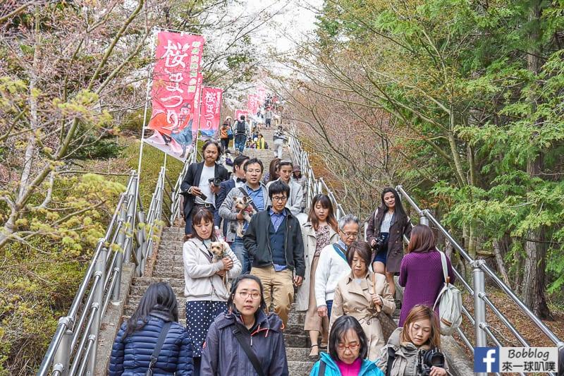 Arakurayama Sengen Park-21