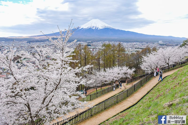 Arakurayama Sengen Park-54