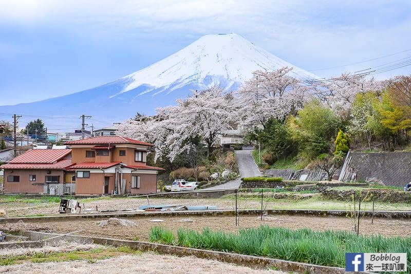 Arakurayama Sengen Park-6