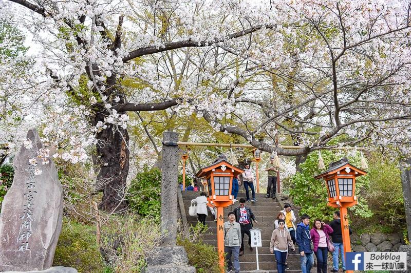 Arakurayama Sengen Park-7