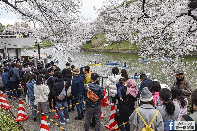 東京千鳥淵划船(千鳥ヶ淵划船,賞櫻季必去)