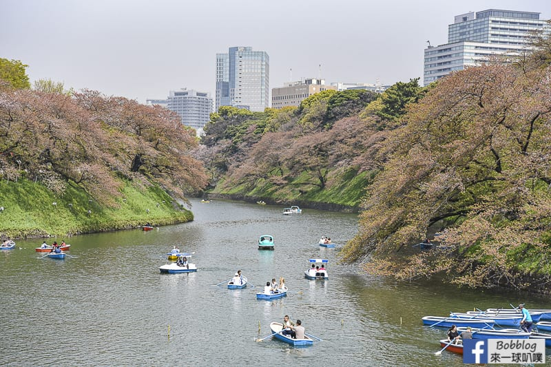 Chidorigafuchi Park boat 10