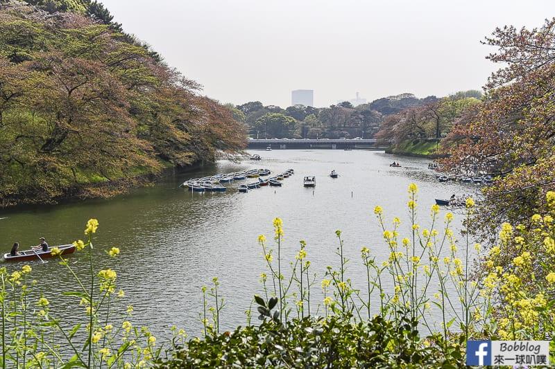 Chidorigafuchi Park boat 8