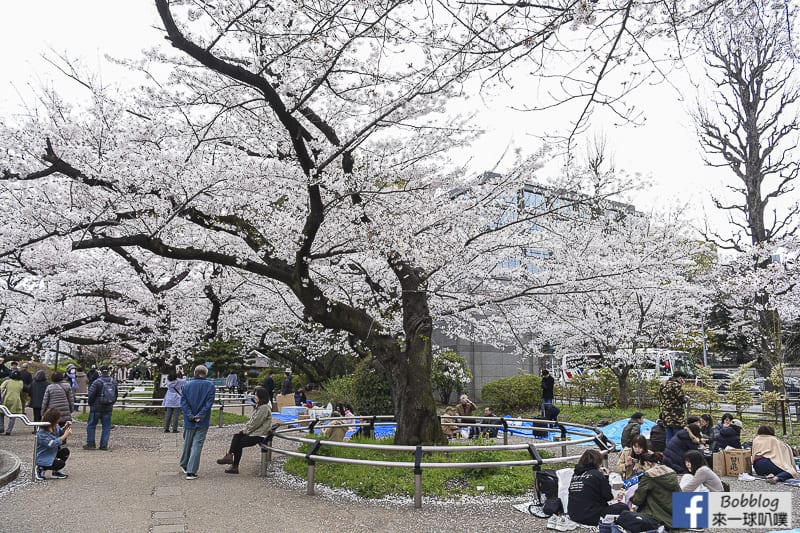 Chidorigafuchi Park 10