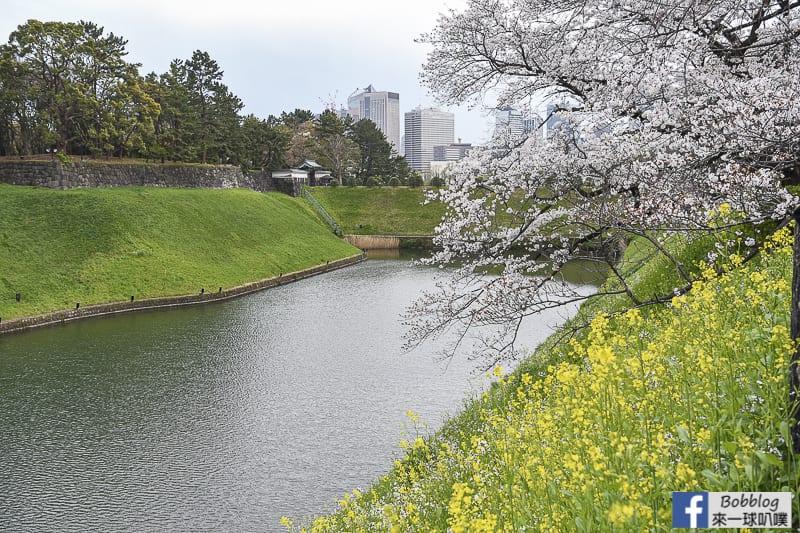 Chidorigafuchi Park 11