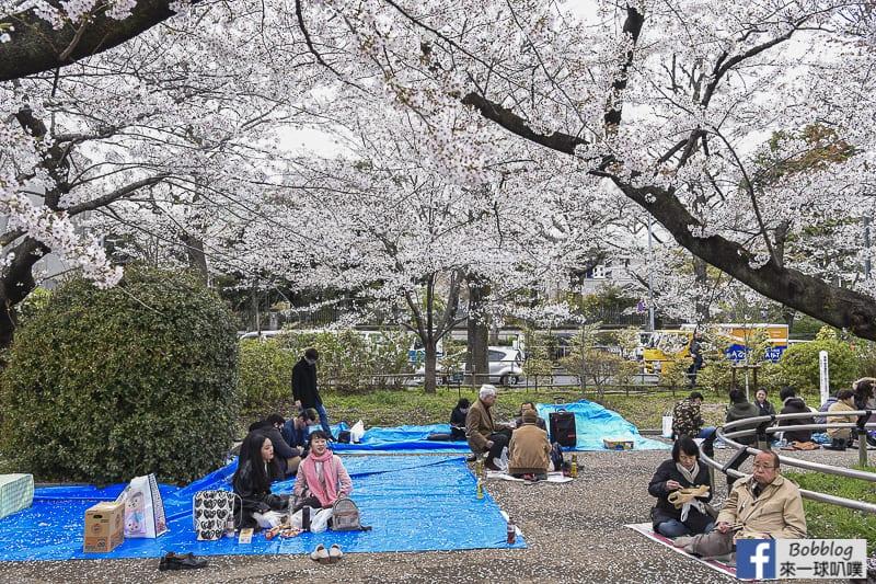 Chidorigafuchi Park 12
