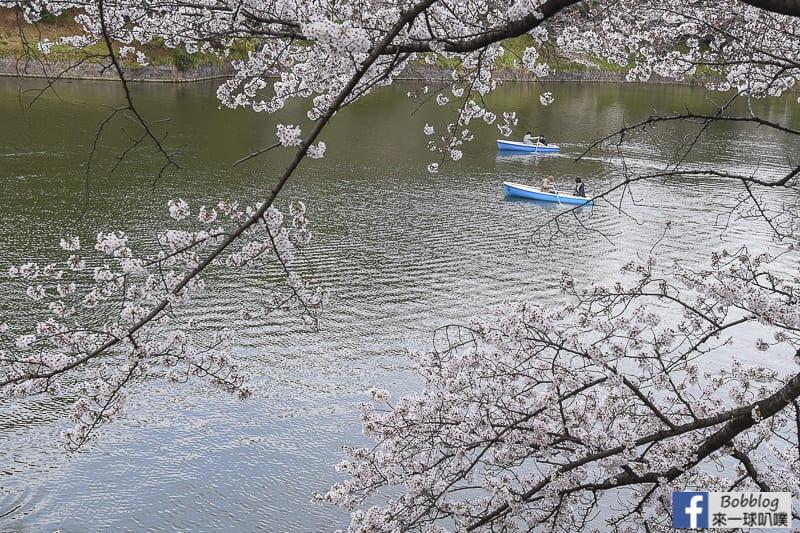 Chidorigafuchi Park 19