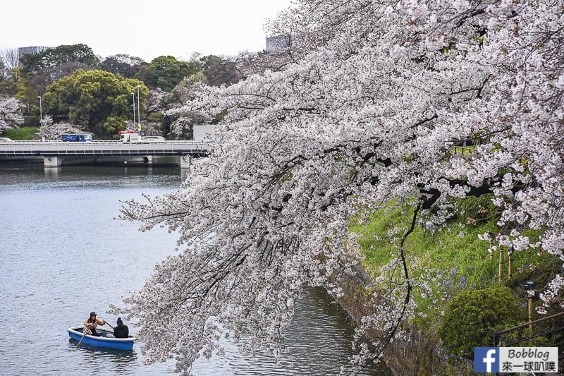 Chidorigafuchi Park 26