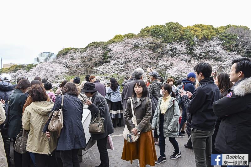 Chidorigafuchi Park 27