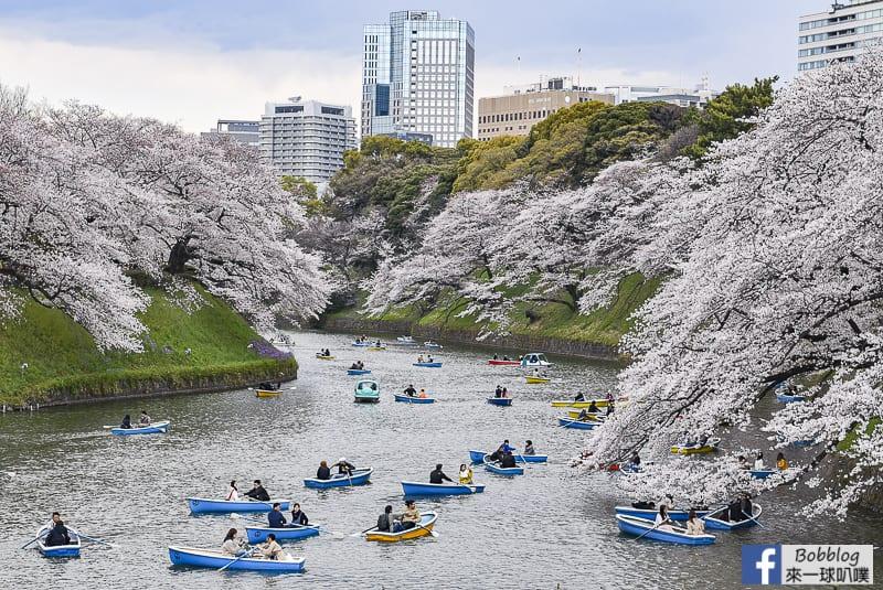 延伸閱讀:東京賞櫻最熱門-千鳥淵綠道櫻花,千鳥淵划船,櫻花拍攝地點
