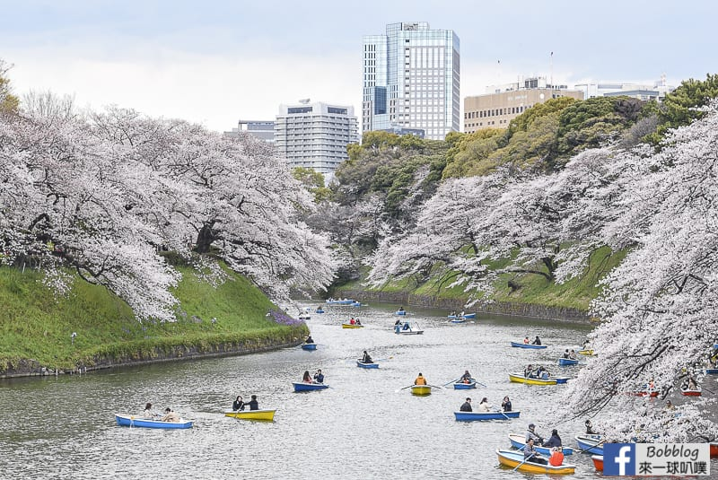 Chidorigafuchi Park 35