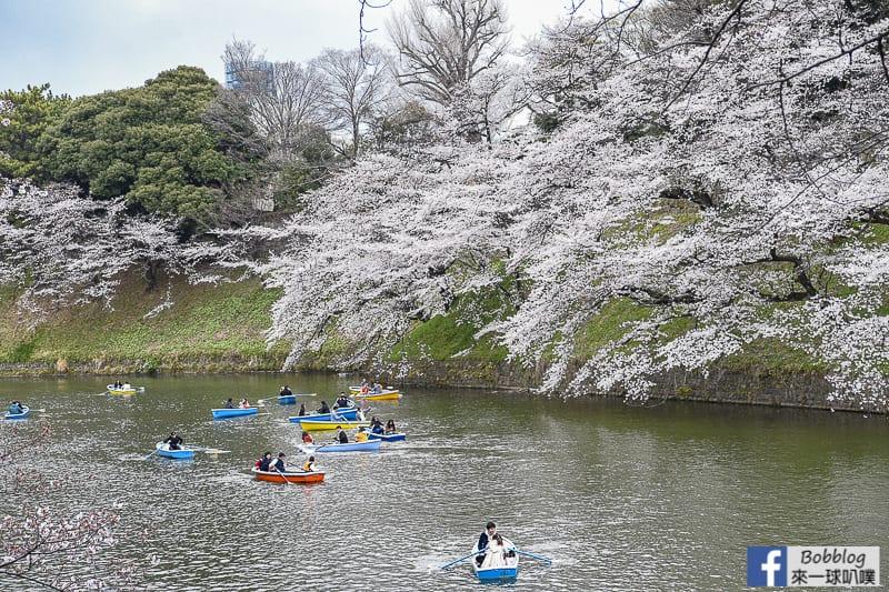 Chidorigafuchi Park 40