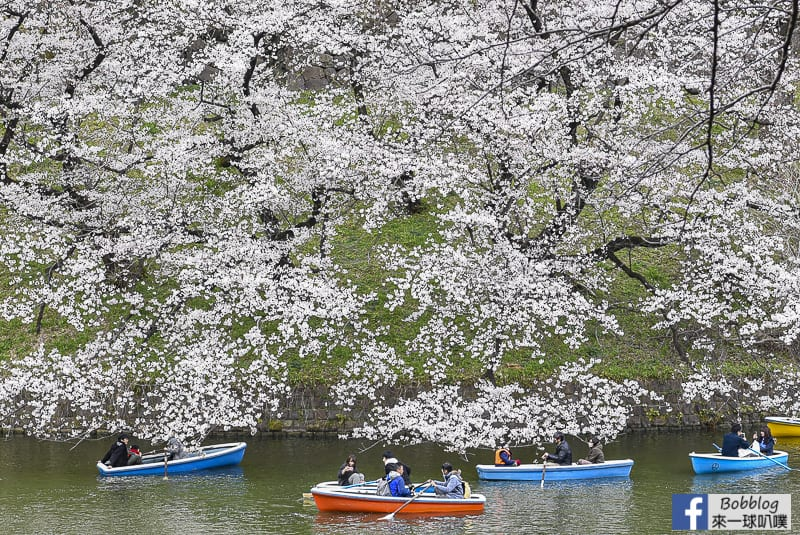 Chidorigafuchi Park 41