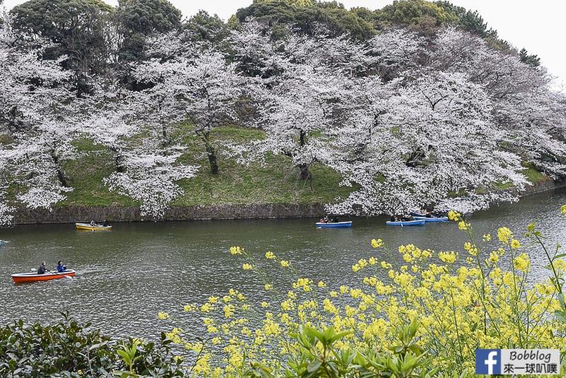 Chidorigafuchi Park 44