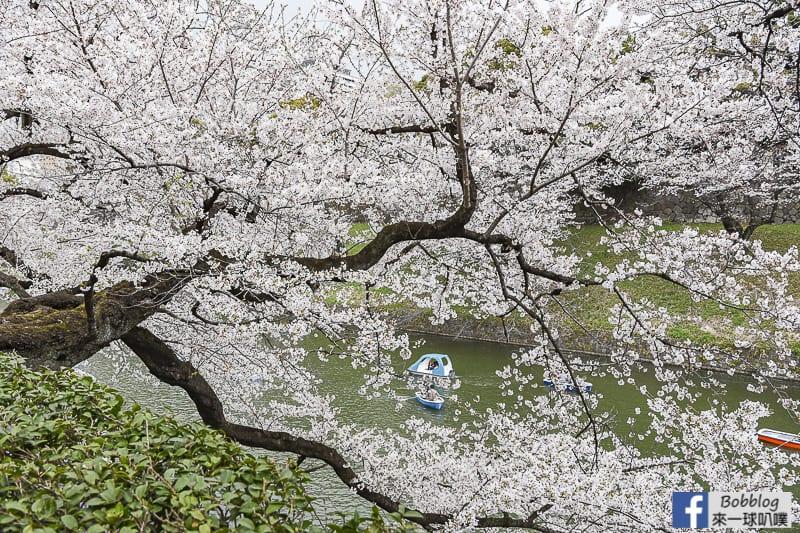 Chidorigafuchi Park 45