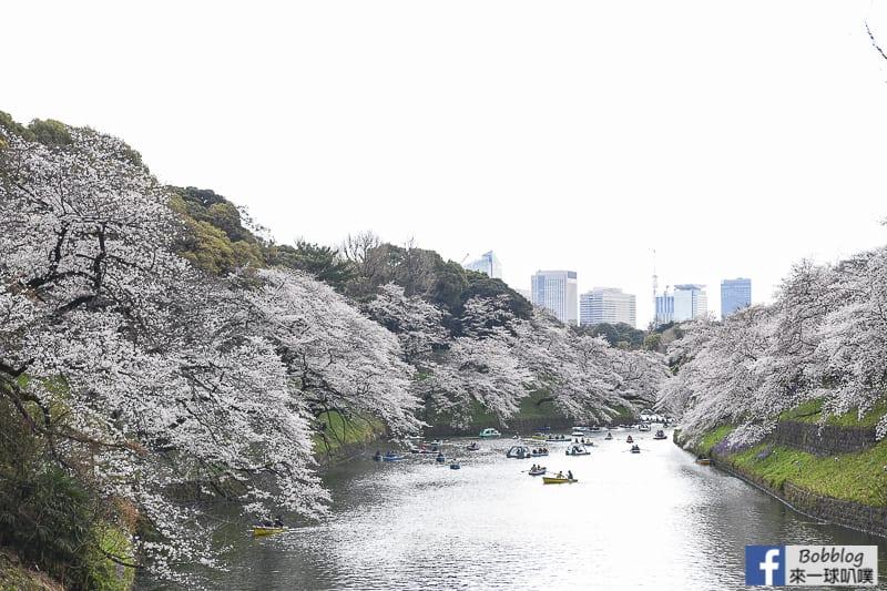 Chidorigafuchi Park 49