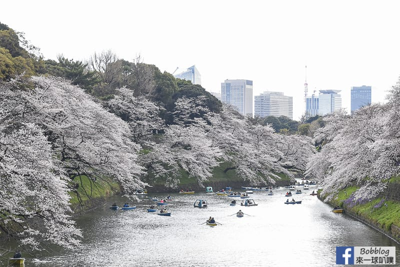 Chidorigafuchi Park 50