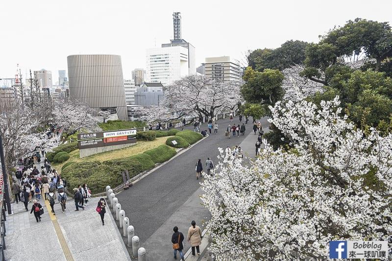 Chidorigafuchi Park 51