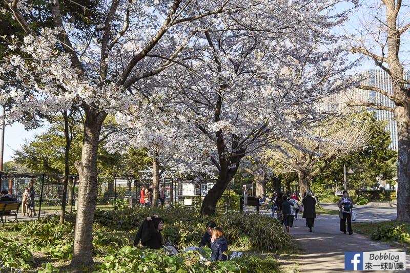 Hibiya Park 10