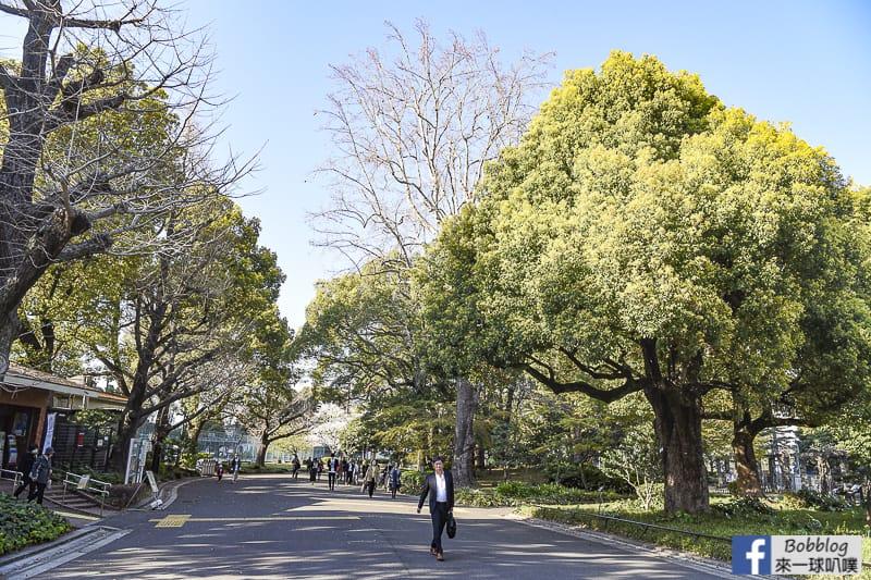 Hibiya Park 12