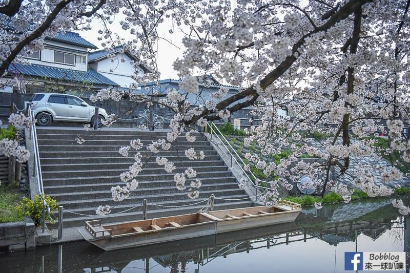 Hikawa Shrine 24