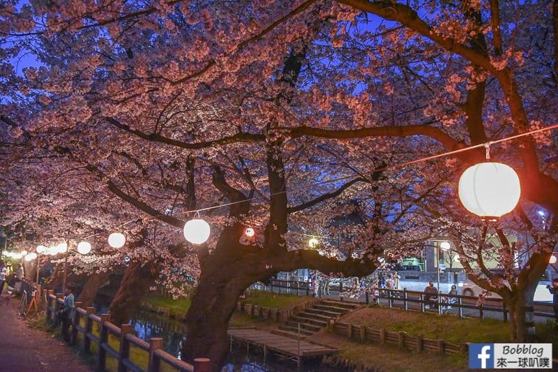 Hikawa Shrine 36