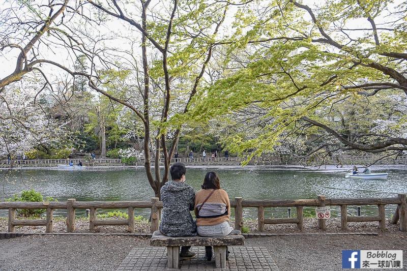 Inokashira Onshi Park sakura 34