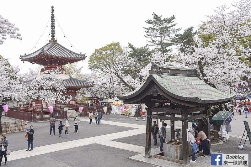 Kitain Temple sakura 11