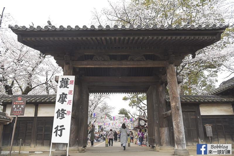 Kitain Temple sakura 2
