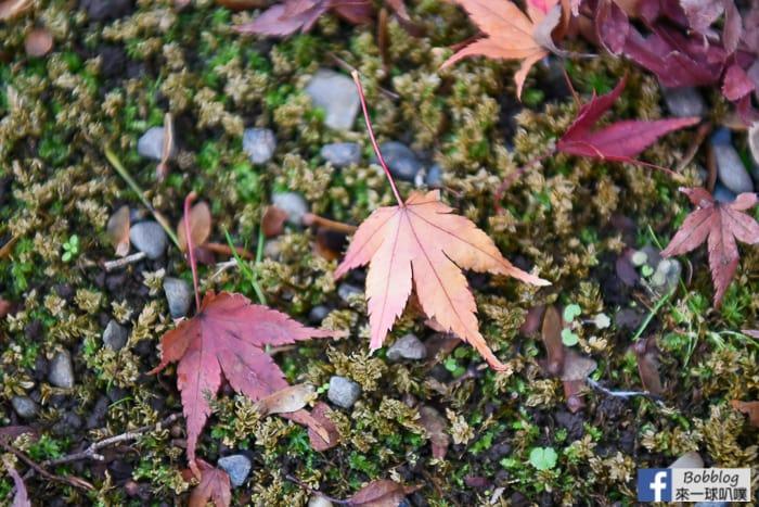 Kyu-Furukawa-Gardens-13