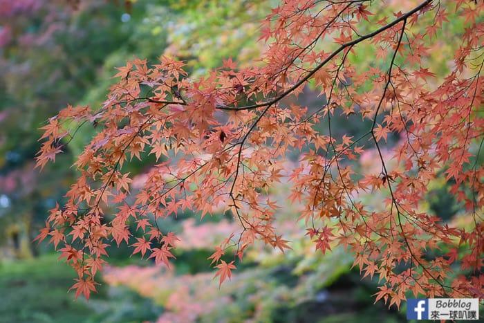Kyu-Furukawa-Gardens-15