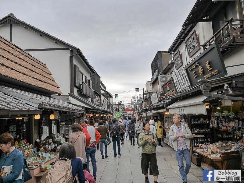 Shibamata street 48