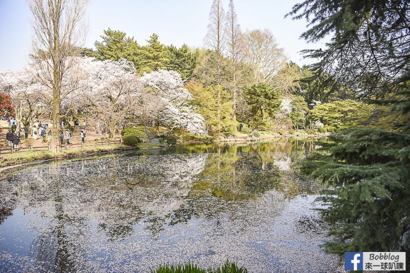 Shinjuku-Gyoen-National-Garden-19