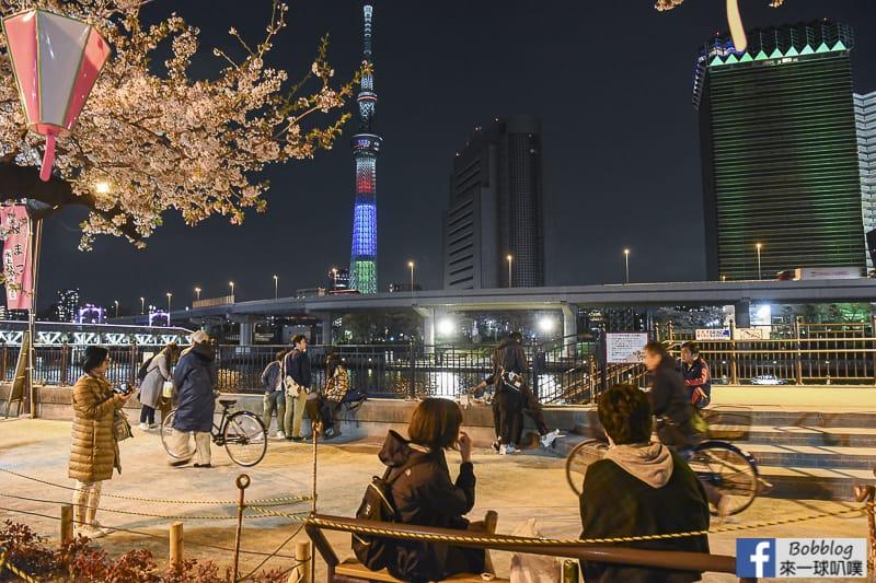 Sumida gawa night sakura 25