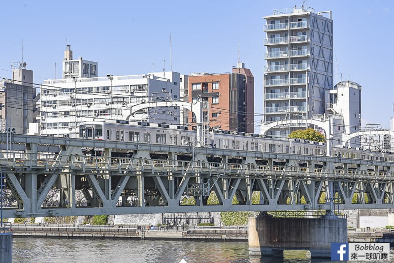 Sumida gawa sakura 38