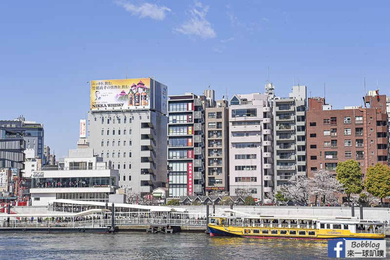 Sumida gawa sakura 43
