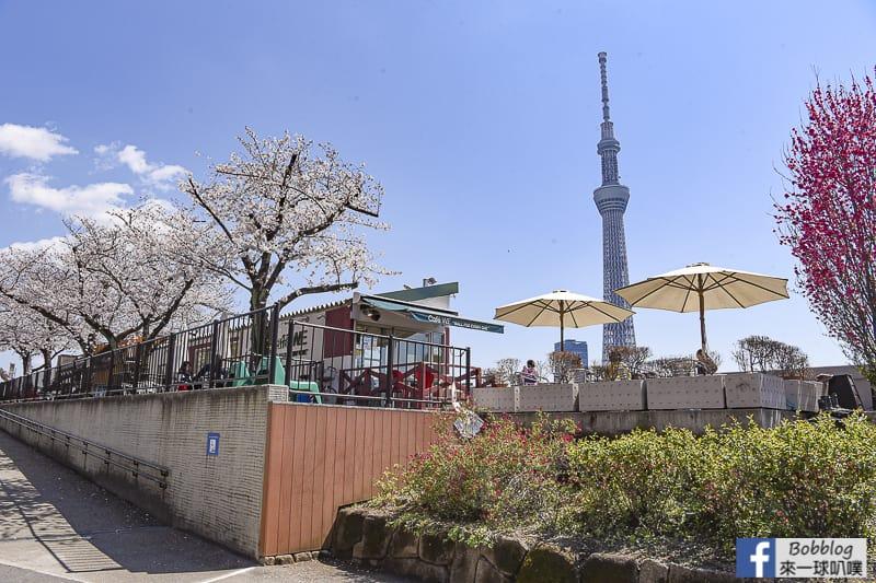 Sumida gawa sakura 66