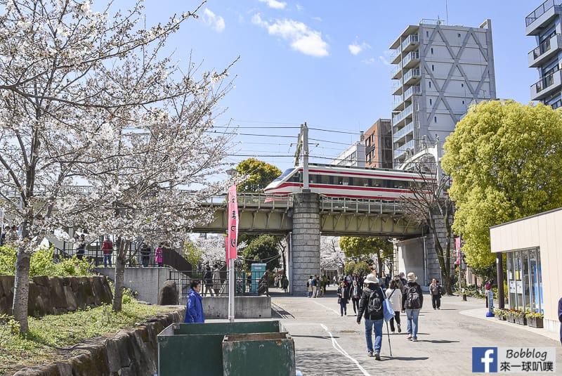 Sumida gawa sakura 67