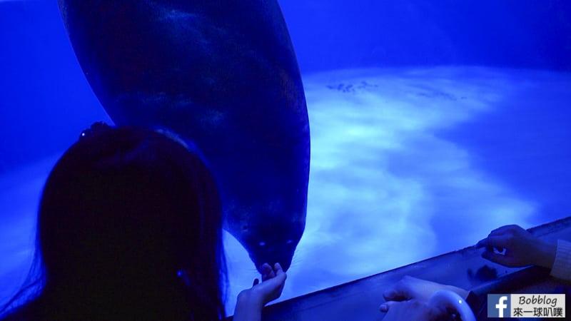 Sunshine-Aquarium-19