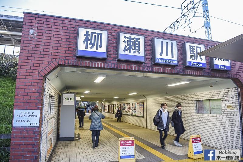 Yanasegawa Sakura 34