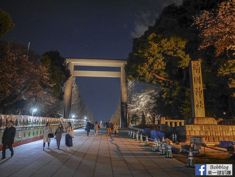 Yasukuni Shrine night sakura