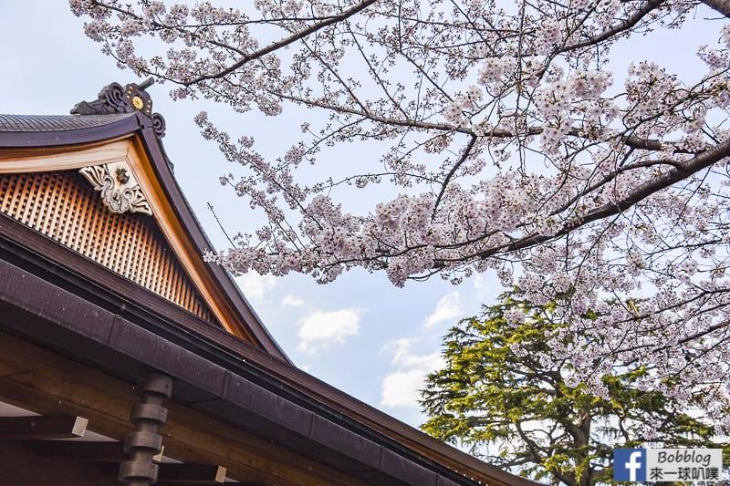Yasukuni Shrine sakura 16