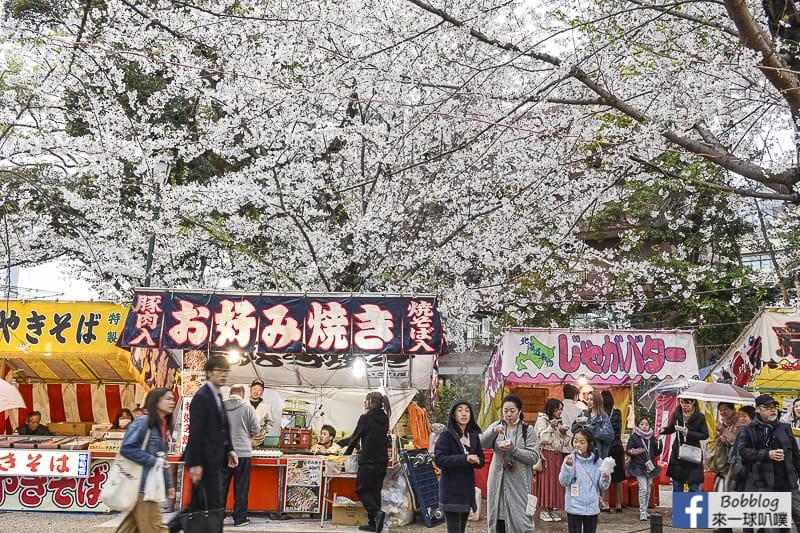 Yasukuni Shrine sakura 3