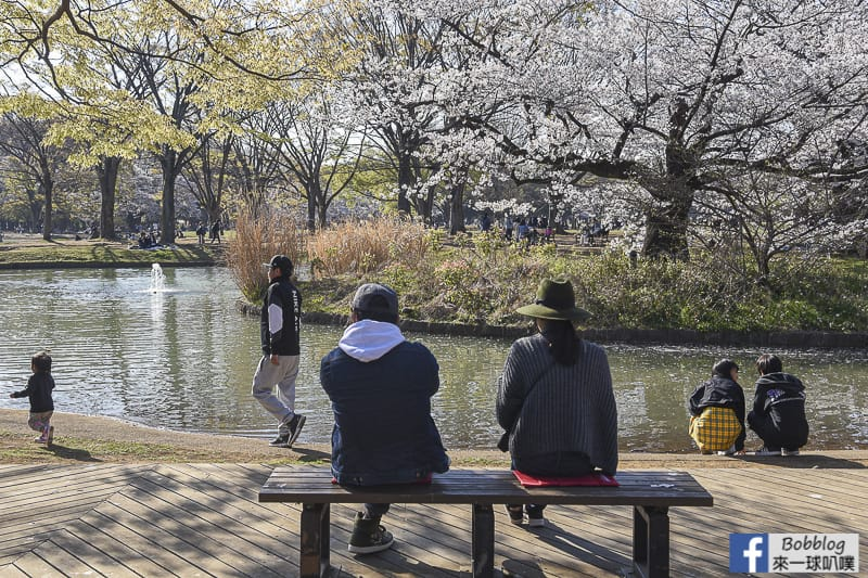 Yoyogi Park sakura 54