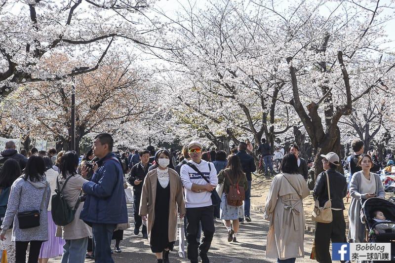 Yoyogi Park sakura 7