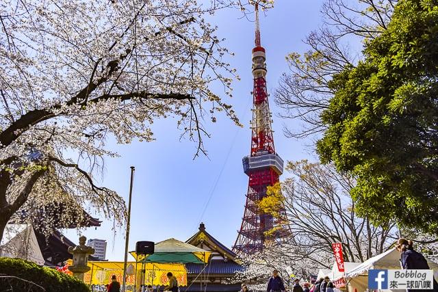 東京賞櫻-東京鐵塔櫻花(超美必拍的東京鐵塔櫻花) @來一球叭噗日本自助攻略