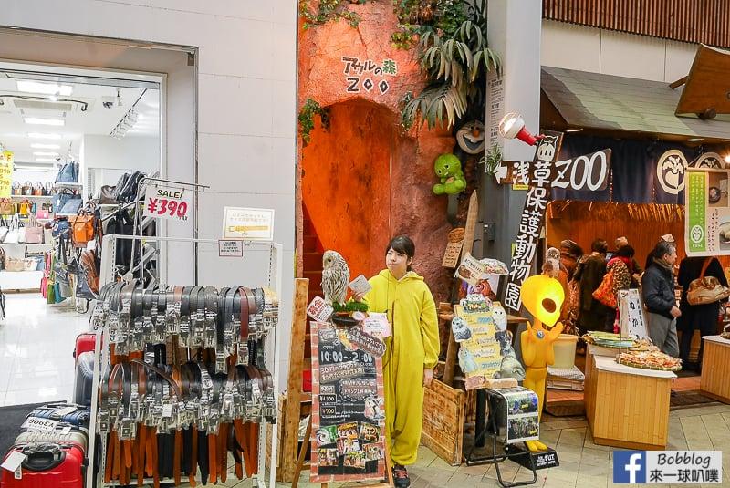 Asakusa shopping street 17