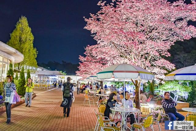 ashikaga-flower-park-91