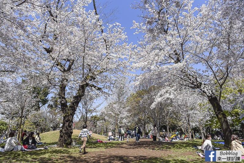 Asukayama park 11